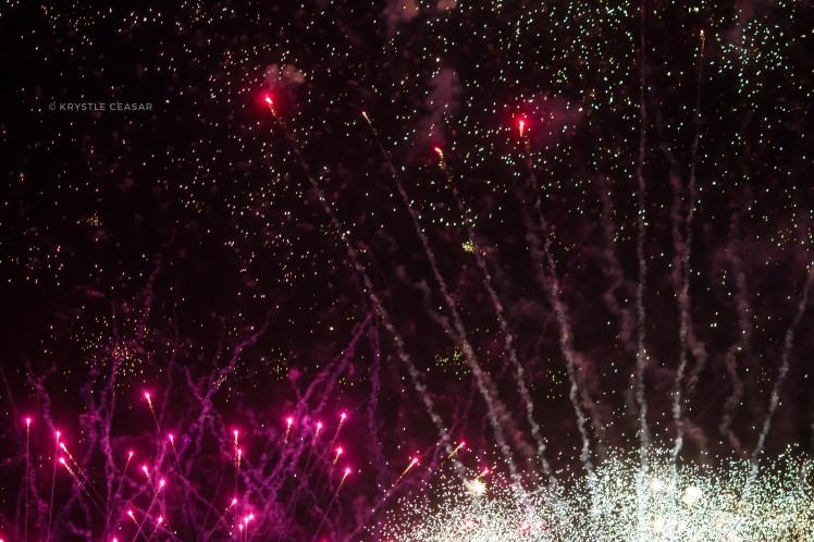 firework2-0073_wm